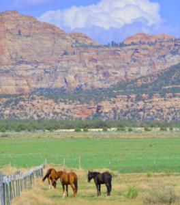 Apple Valley Utah Homes have incredible views
