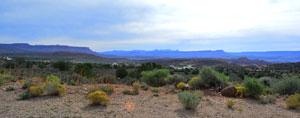 Leeds Utah View