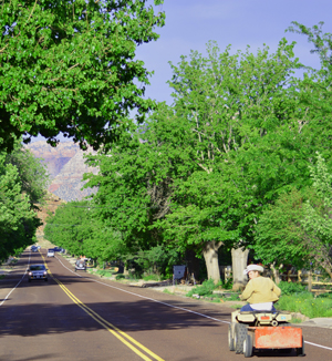 Downtown Rockville Utah Homes for Sale