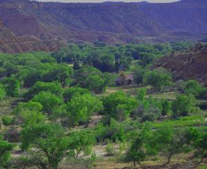 Rockville Utah Homes for Sale near Virgin River
